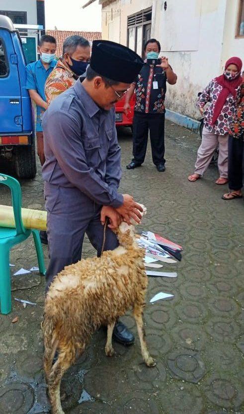 Praktek Penyembelihan Hewan Qurban